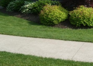 Hokes Landscape Maintenance includes mowing, trimming, pruning,     mulching, edging, and more!